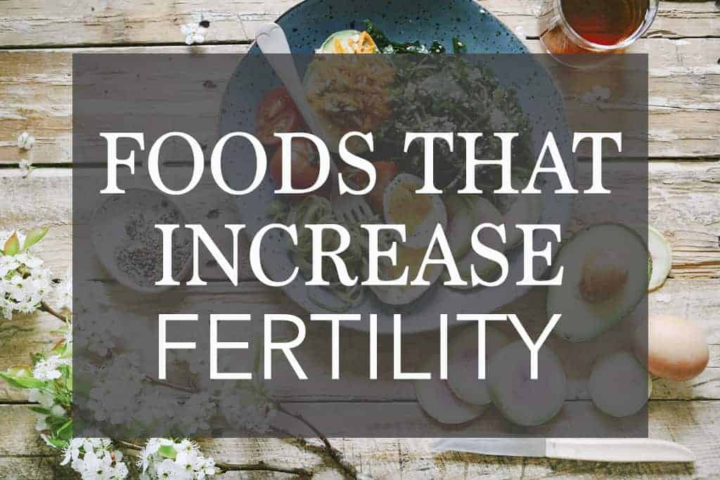 The BEST Foods That Increase Fertility – And Will Help While Trying to Get Pregnant
