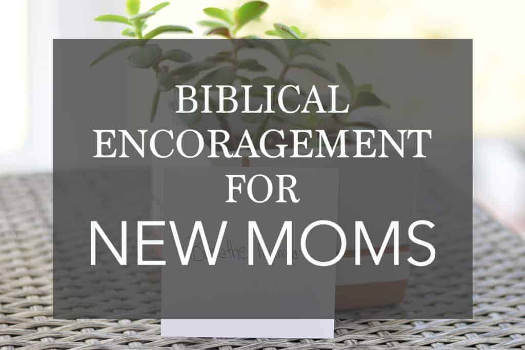 Biblical Encouragement for New Moms – You're Not Perfect and Its OK